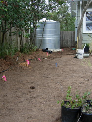 black gumbo soil against foundation and rainwater colleciton tank